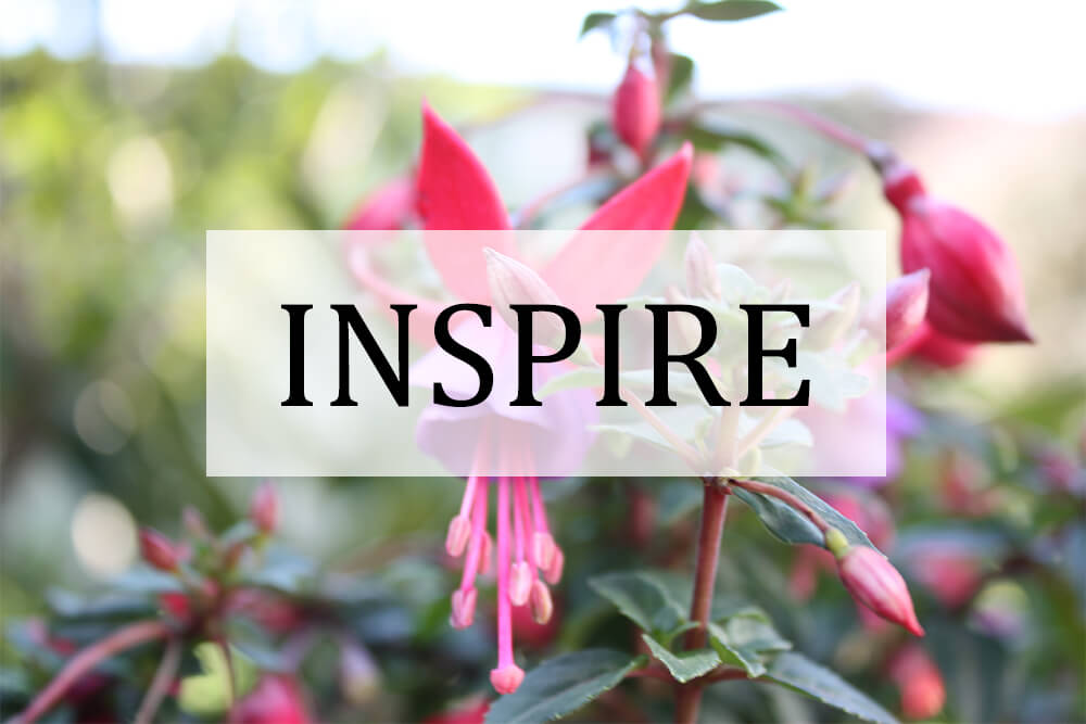 Inspire category thumbnail
