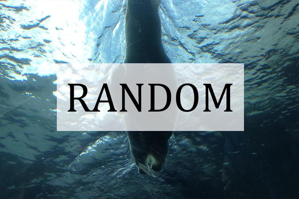 Random category thumbnail