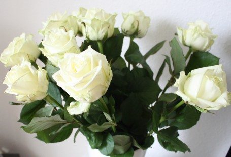 white roses at home