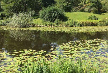 botanisk have i københavn 2017