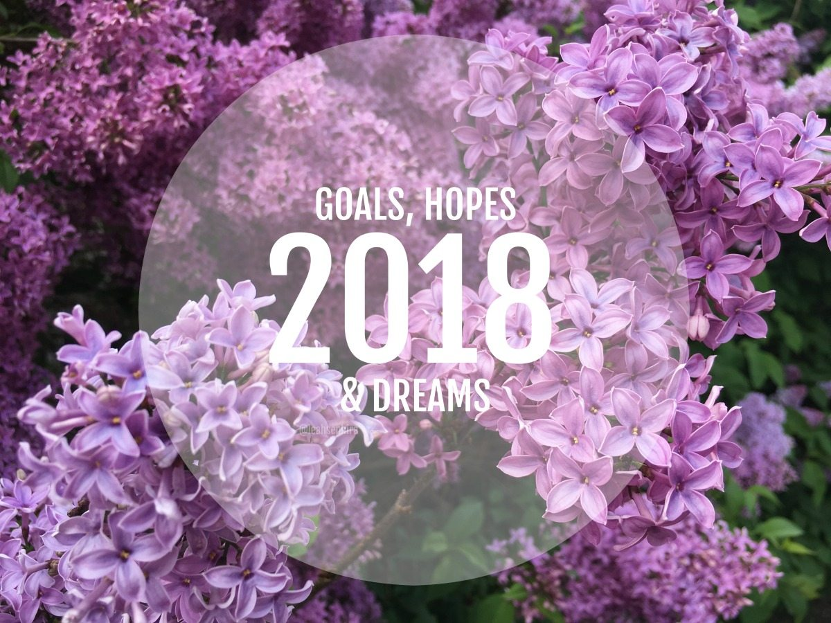 goals and hopes 2018