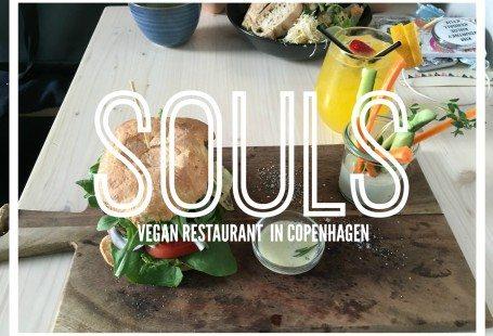 souls vegan restaurant in copenhagen 2016