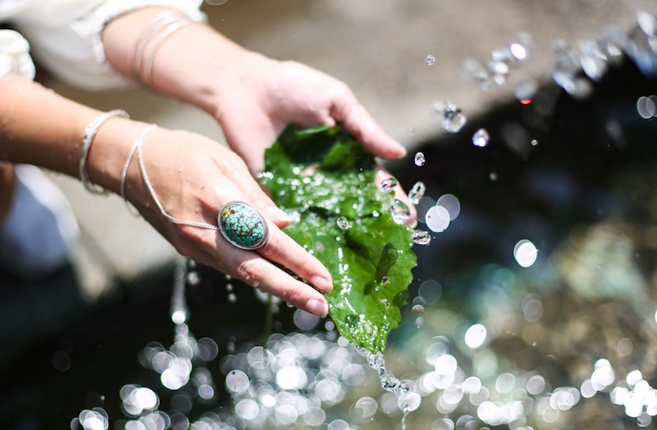 woman washing a leaf and hands